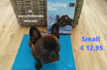 Cooling mat hond kopen | Tuincentrum Rebel